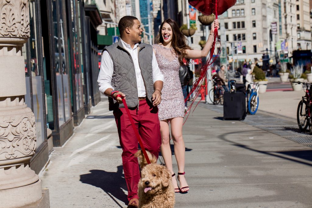 Valentines Day photoshoot, new york city, sequins, day, mini goldendoodle